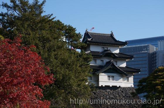 江戸城 紅葉を見に「皇居乾通り一般公開」に行ってきた