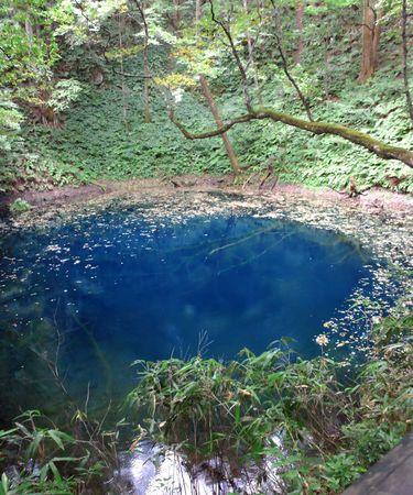 白神山地と弘前・青森の旅(8) 曇りでも青池は本当に青かった! 白神山地ハイキング