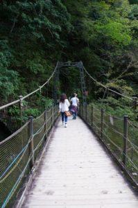 吊り橋を渡って行こう