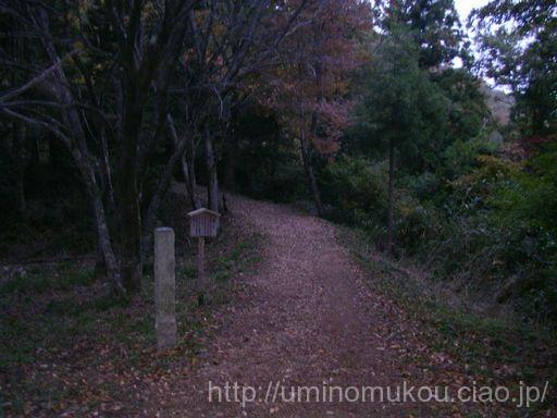 長浜城と小谷城の旅(5) 小谷城 山城ってこんなに苛酷なのか!