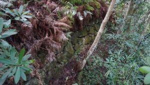 引田城 化粧池の石垣