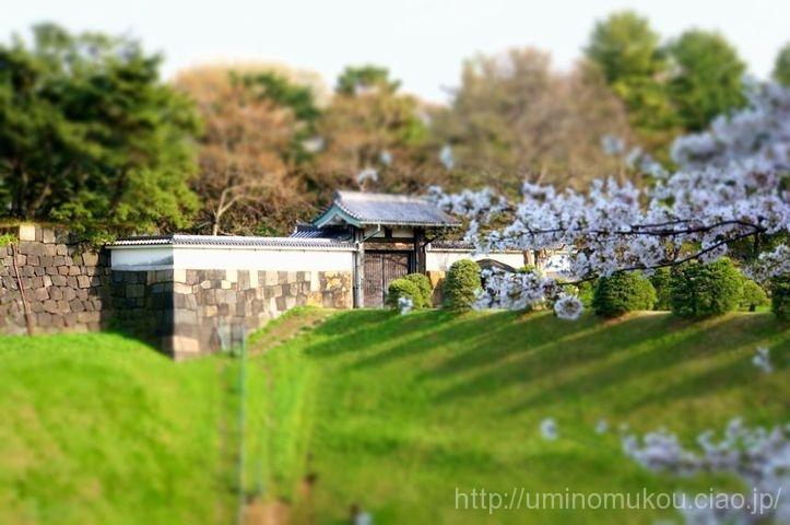 江戸城 半蔵門とお堀と石垣と桜 城好きにはたまらぬ絶景