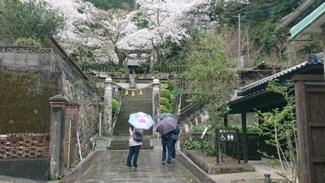 崎津神社の鳥居