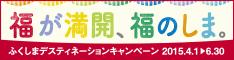 link_fukushima_dc_banner234x60